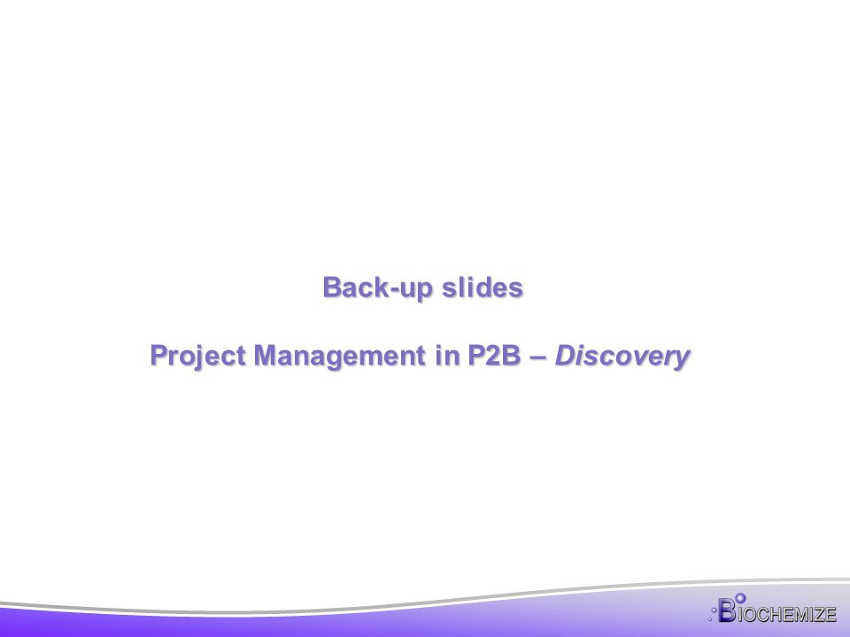 Back-up slides Project Management in P2B – Discovery