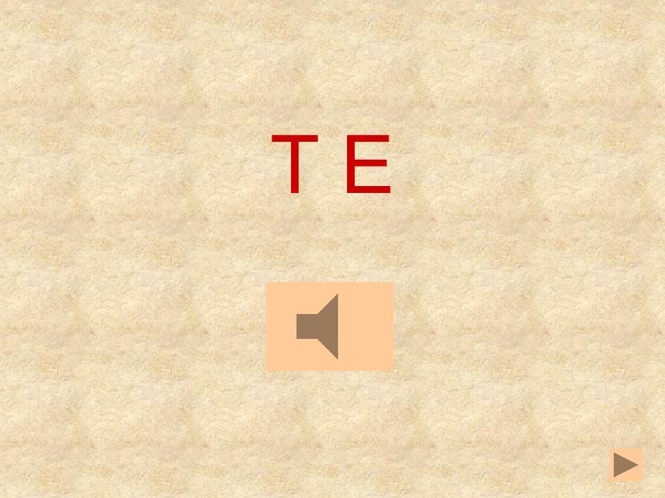 AEIOU T _