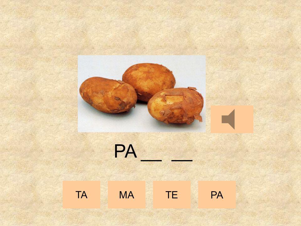 TA MATE PA