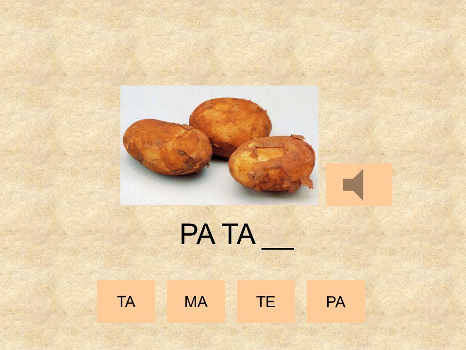 TA MATE PA PA __ __