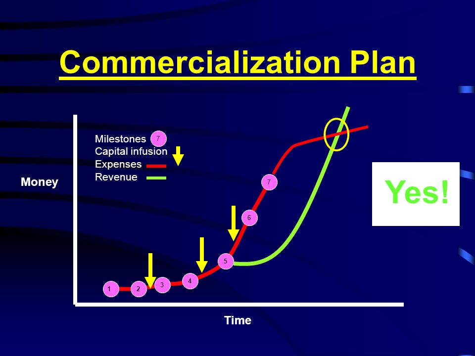Commercialization Plan 12 3 4 5 6 7 Time Money Milestones Capital infusion Expenses Revenue 7 Yes!