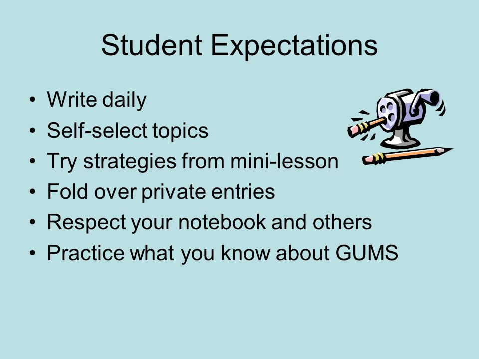 Student Expectations Write daily Self-select topics Try strategies from mini-lesson Fold over private entries Respect your notebook and others Practic