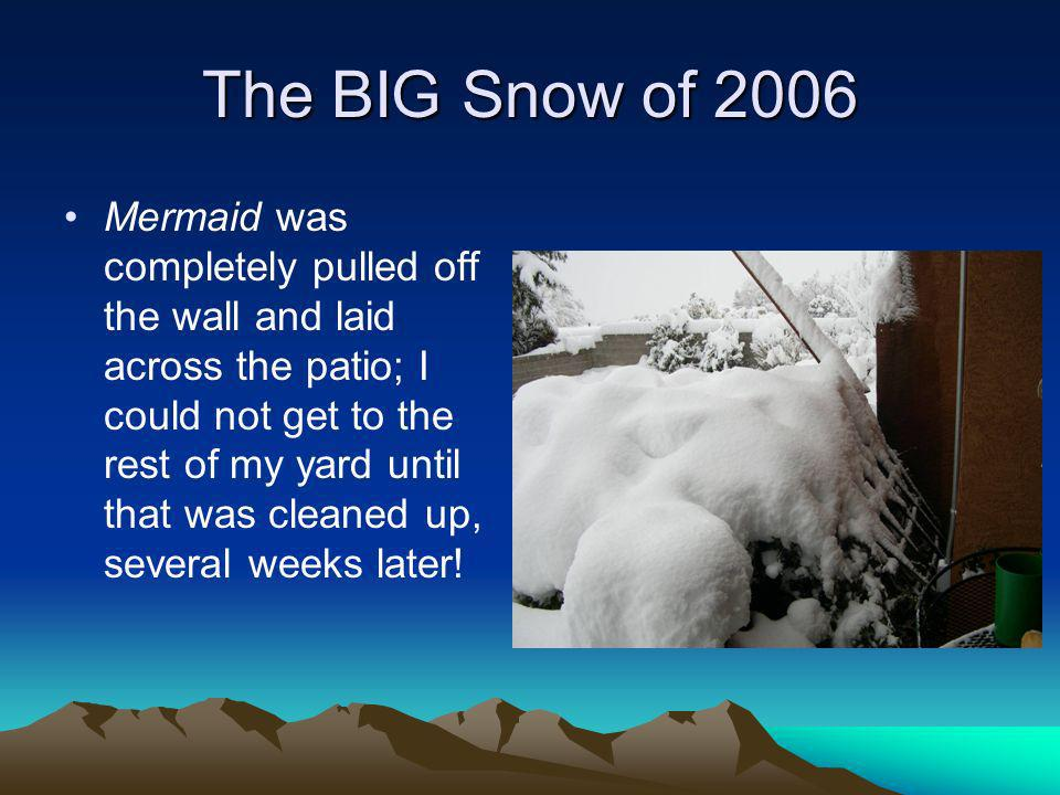The BIG Snow of 2006 Mermaid was completely pulled off the wall and laid across the patio; I could not get to the rest of my yard until that was cleaned up, several weeks later!