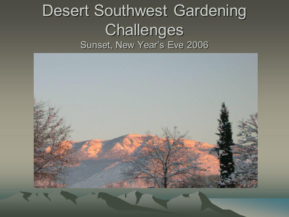 Desert Southwest Gardening Challenges Sunset, New Years Eve 2006