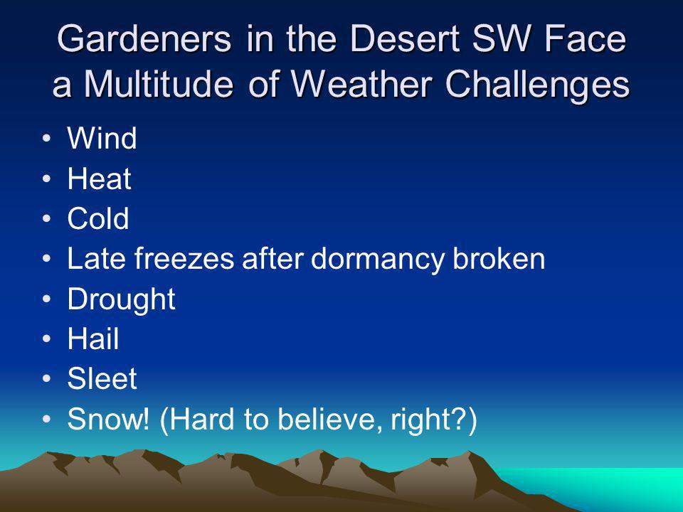 Gardeners in the Desert SW Face a Multitude of Weather Challenges Wind Heat Cold Late freezes after dormancy broken Drought Hail Sleet Snow.