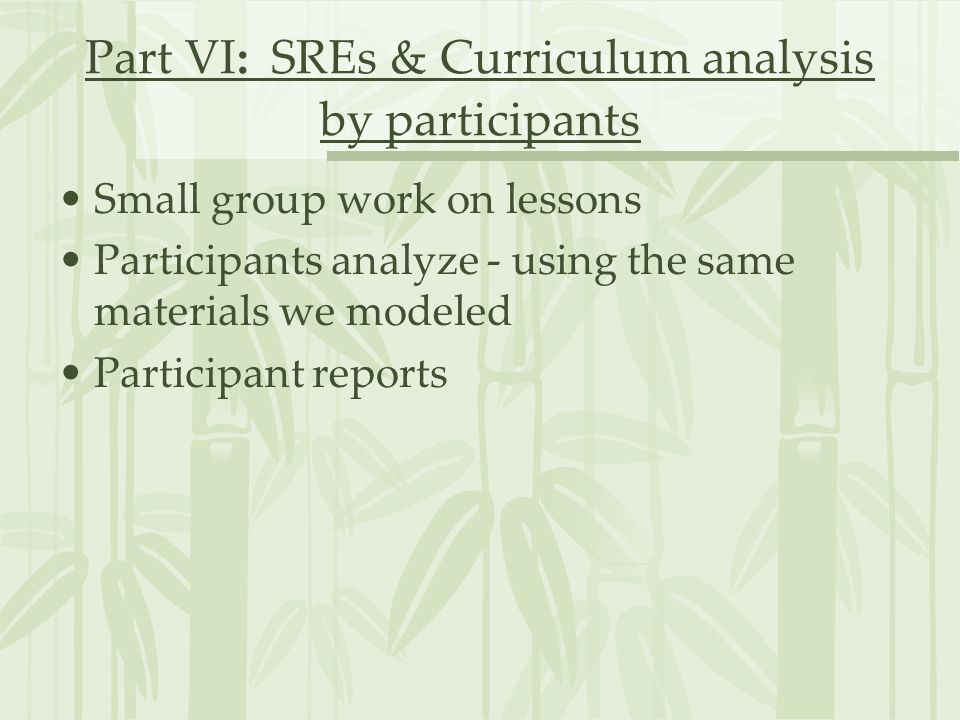 Part VI: SREs & Curriculum analysis by participants Small group work on lessons Participants analyze - using the same materials we modeled Participant