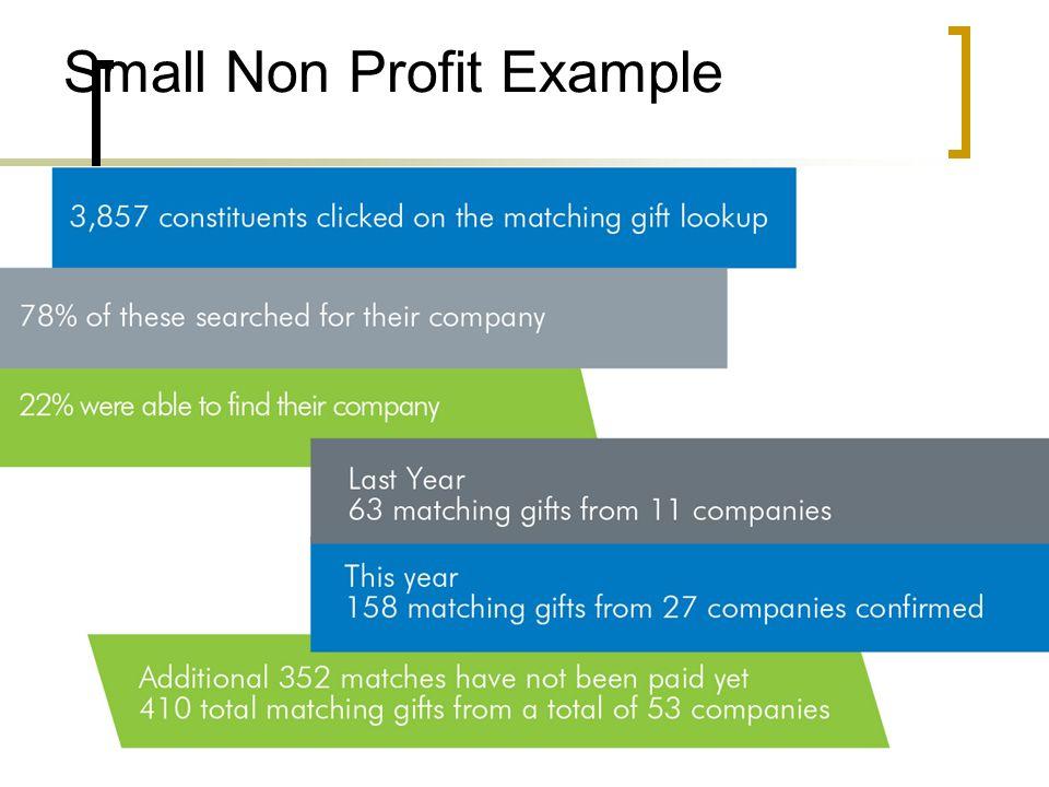 Small Non Profit Example