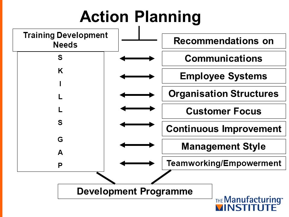 Action Planning Training Development Needs Recommendations on Communications Employee Systems Organisation Structures Customer Focus Continuous Improv