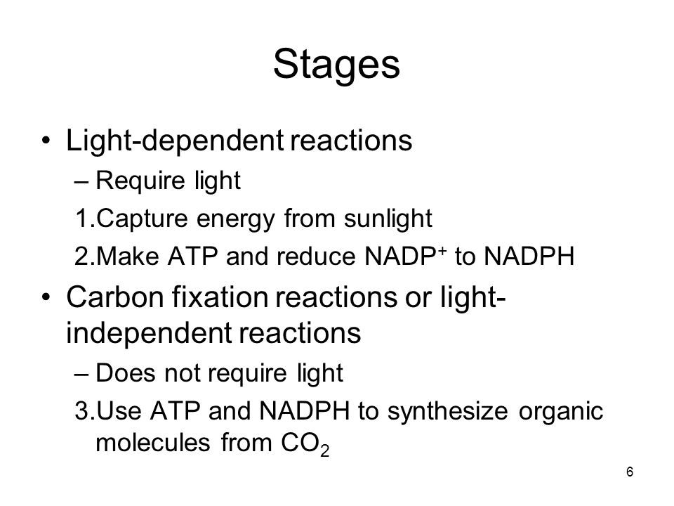 37 Calvin cycle Named after Melvin Calvin (1911–1997) Also called C 3 photosynthesis Key step is attachment of CO 2 to RuBP to form PGA Uses enzyme ribulose bisphosphate carboxylase/oxygenase or rubisco