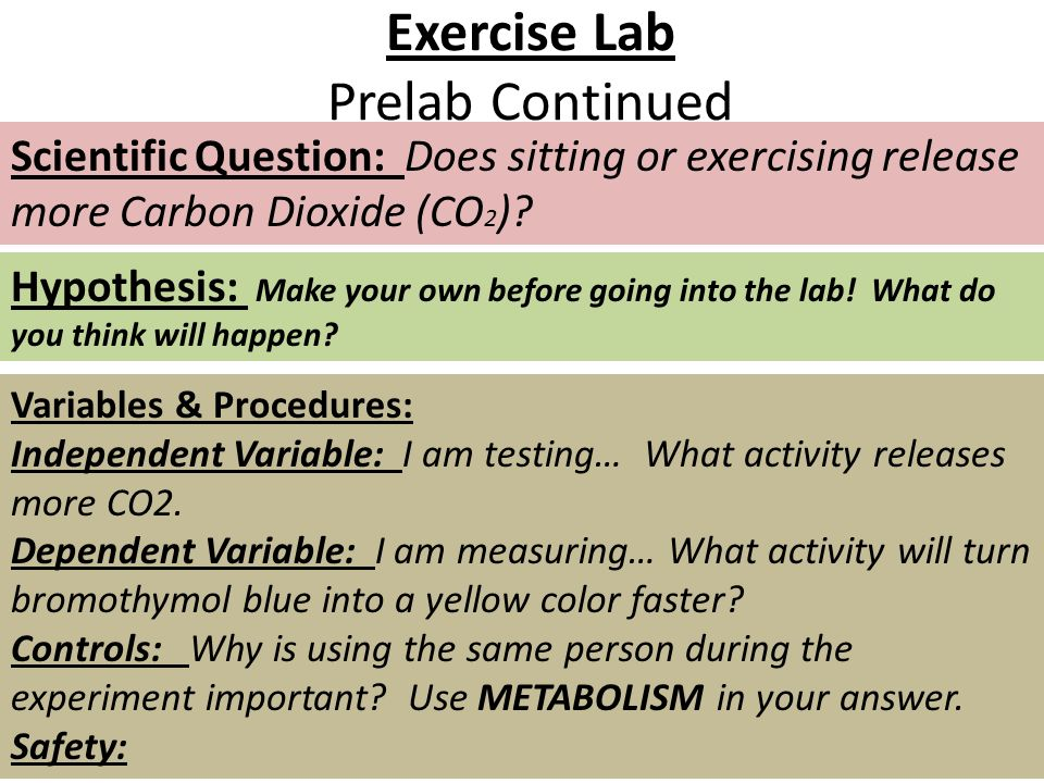 Exercise Lab Prelab Continued Scientific Question: Does sitting or exercising release more Carbon Dioxide (CO 2 )? Hypothesis: Make your own before go
