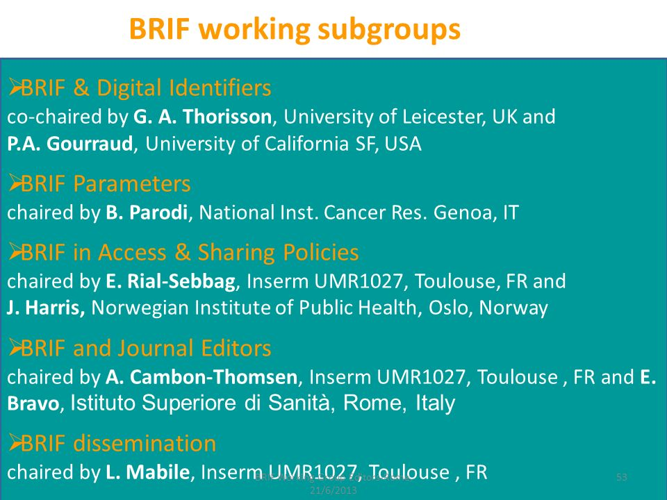 BRIF & Digital Identifiers co-chaired by G. A. Thorisson, University of Leicester, UK and P.A. Gourraud, University of California SF, USA BRIF Paramet