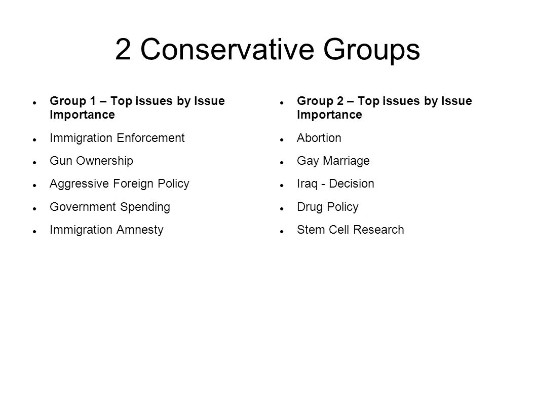 2 Conservative Groups Group 1 – Top issues by Issue Importance Immigration Enforcement Gun Ownership Aggressive Foreign Policy Government Spending Immigration Amnesty Group 2 – Top issues by Issue Importance Abortion Gay Marriage Iraq - Decision Drug Policy Stem Cell Research