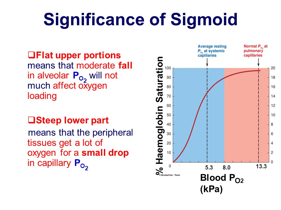 Significance of Sigmoid Flat upper portions means that moderate fall in alveolar P O 2 will not much affect oxygen loading Steep lower part means that