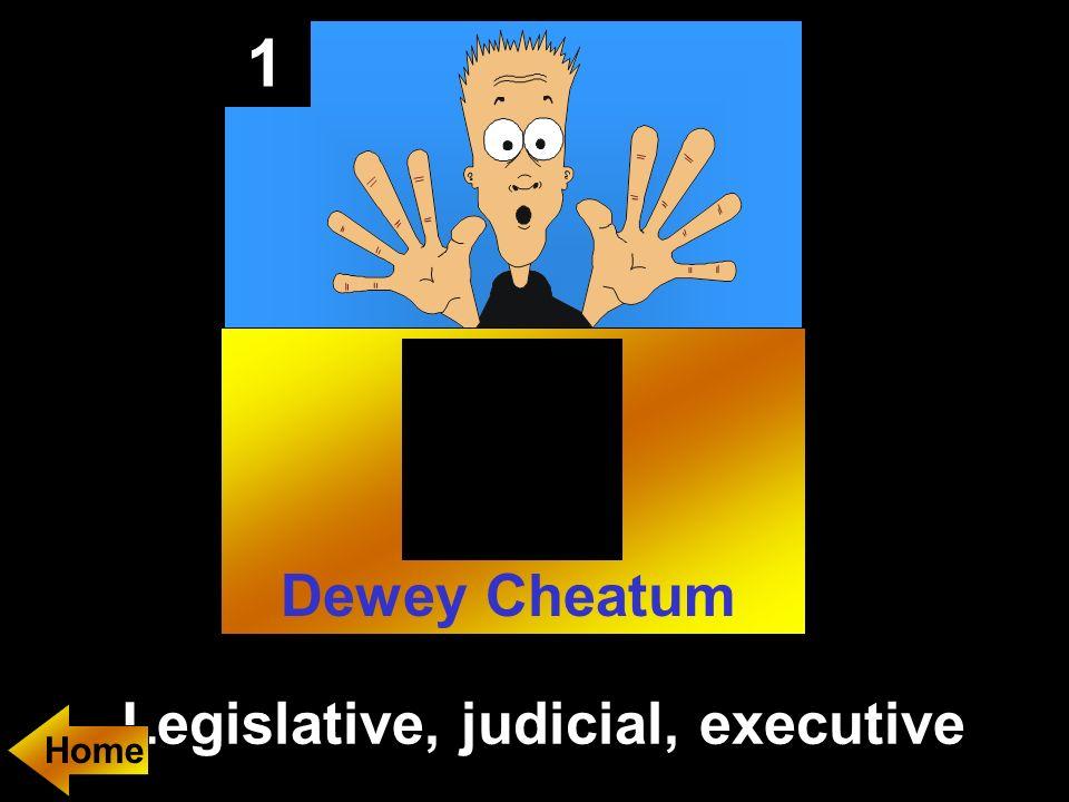 1 Legislative, judicial, executive Home Dewey Cheatum