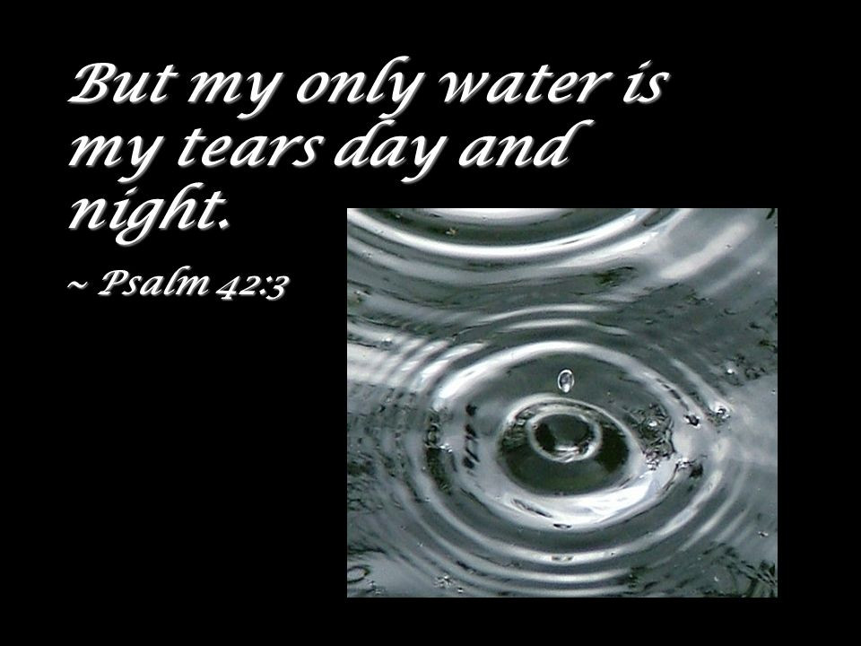 But my only water is my tears day and night. ~ Psalm 42:3