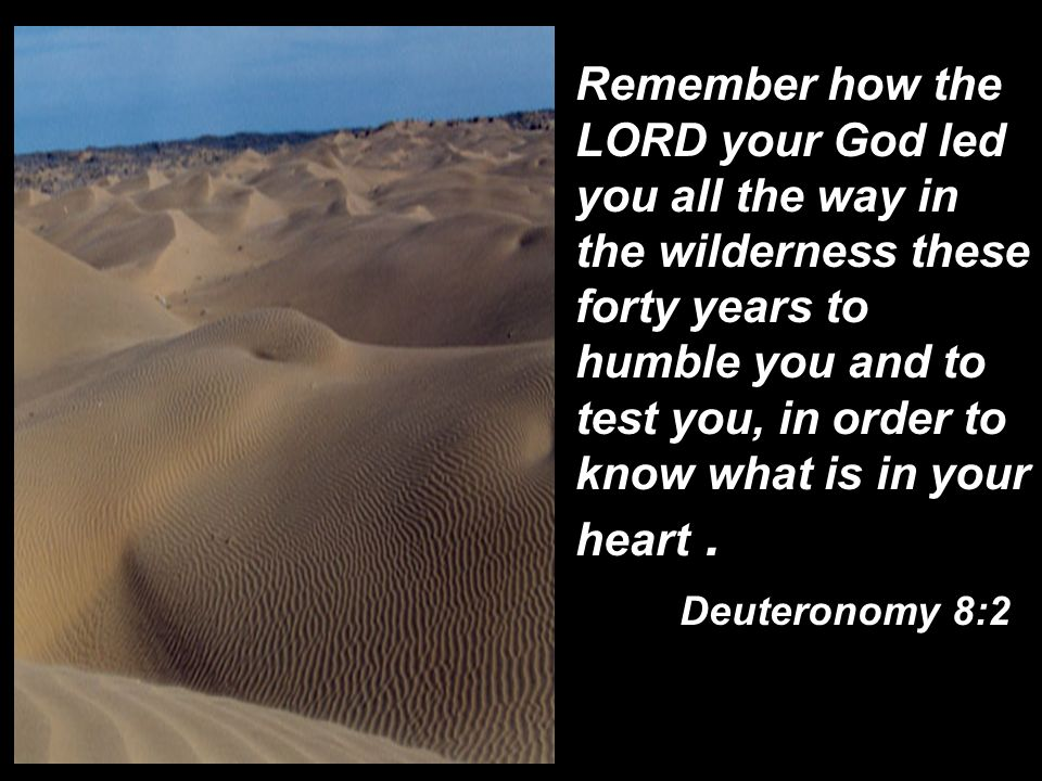 Remember how the LORD your God led you all the way in the wilderness these forty years to humble you and to test you, in order to know what is in your