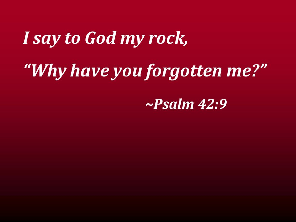 I say to God my rock, Why have you forgotten me? ~Psalm 42:9