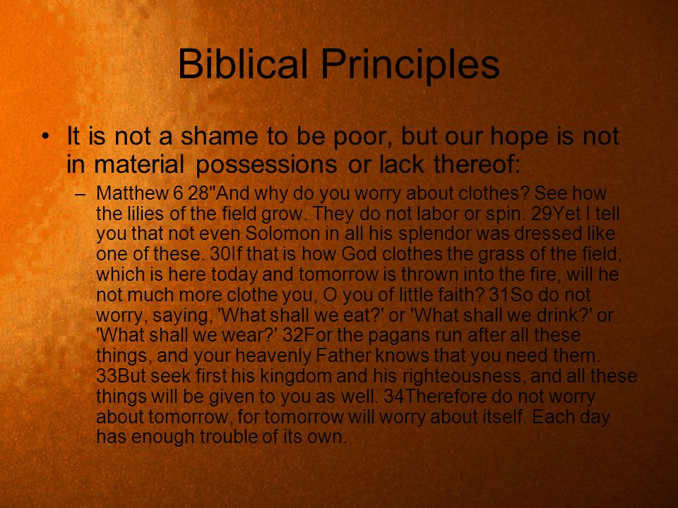 Biblical Principles It is not a shame to be poor, but our hope is not in material possessions or lack thereof: –Matthew 6 28