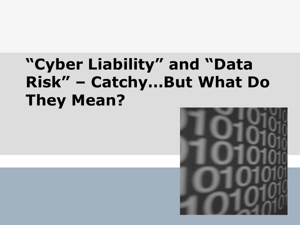 Cyber Liability and Data Risk – Catchy…But What Do They Mean?