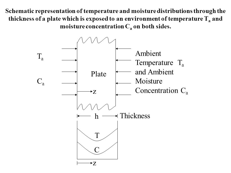 Schematic representation of temperature and moisture distributions through the thickness of a plate which is exposed to an environment of temperature
