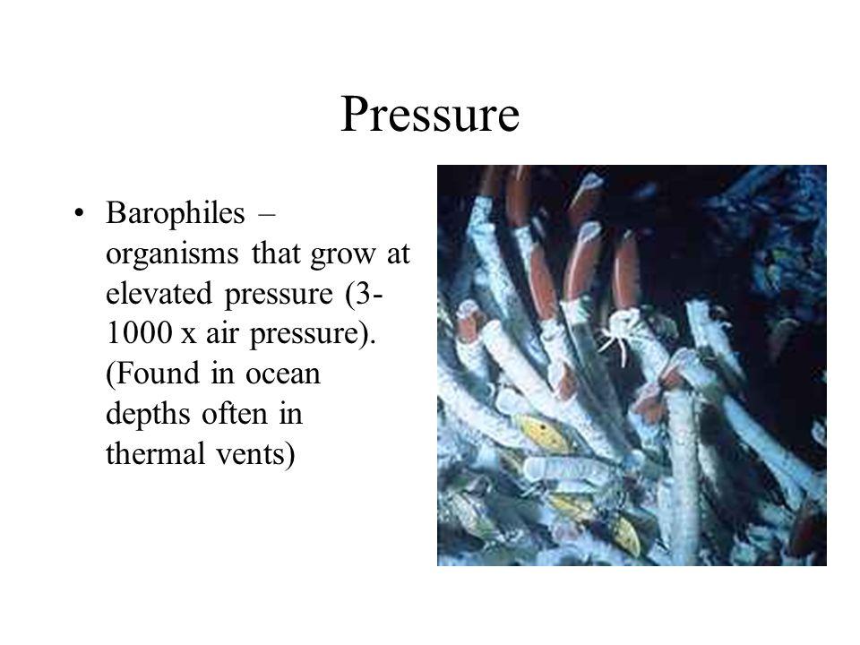 Pressure Barophiles – organisms that grow at elevated pressure (3- 1000 x air pressure). (Found in ocean depths often in thermal vents)