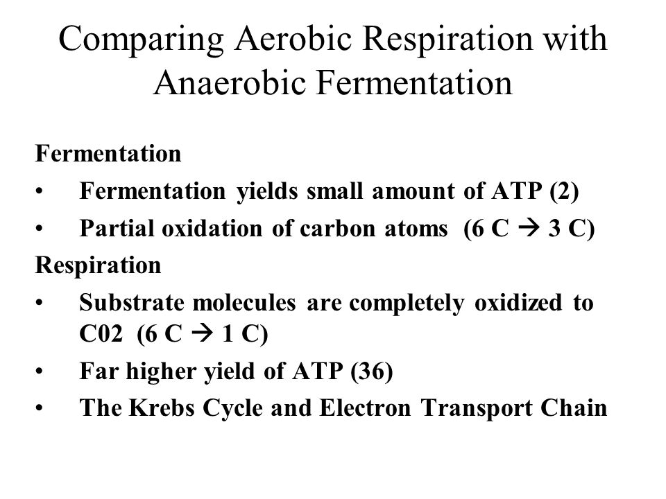 Comparing Aerobic Respiration with Anaerobic Fermentation Fermentation Fermentation yields small amount of ATP (2) Partial oxidation of carbon atoms (