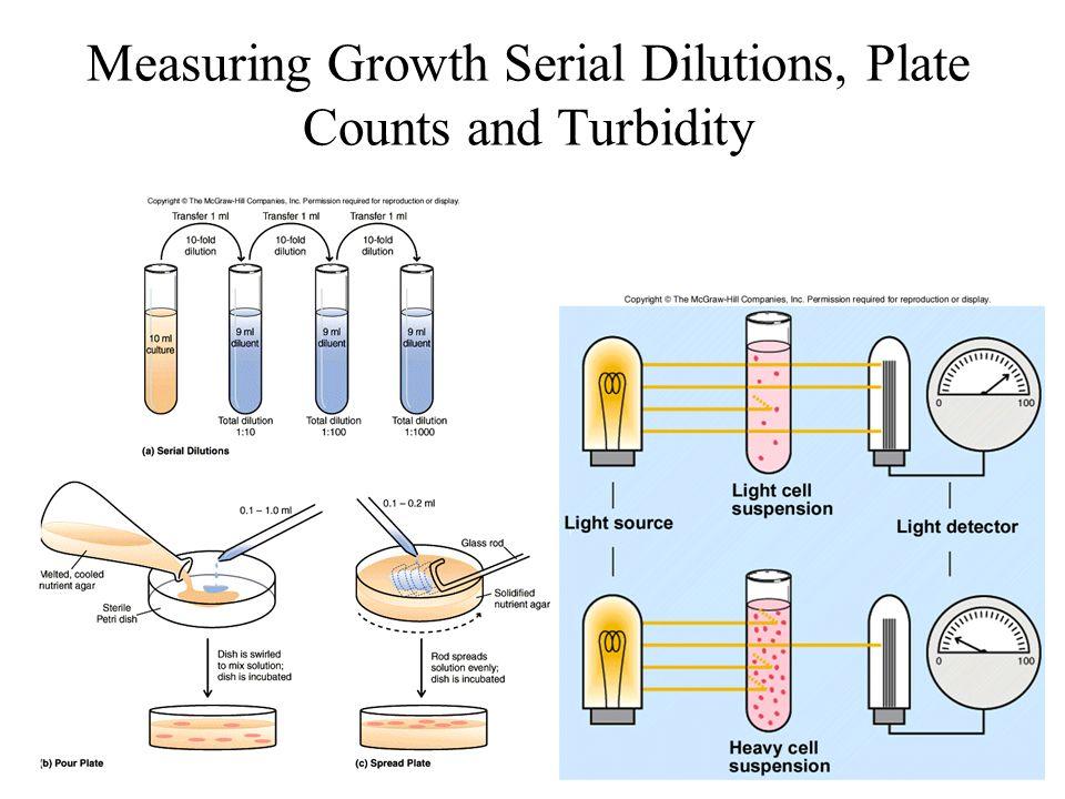 Measuring growth turbidity plate counts Measuring Growth Serial Dilutions, Plate Counts and Turbidity