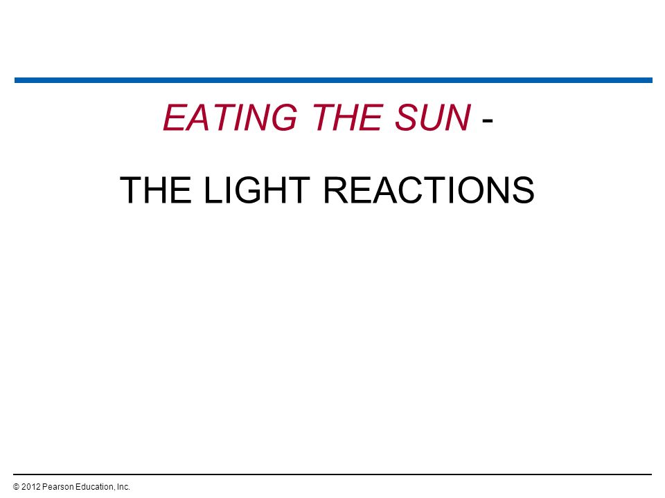 EATING THE SUN - THE LIGHT REACTIONS © 2012 Pearson Education, Inc.