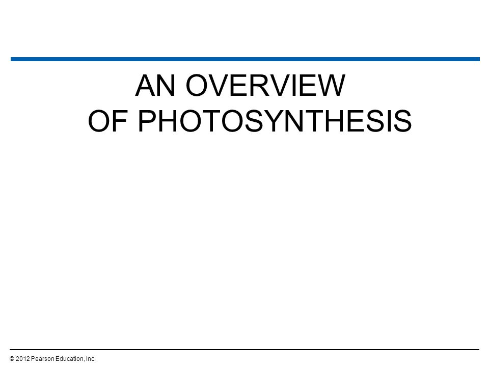 AN OVERVIEW OF PHOTOSYNTHESIS © 2012 Pearson Education, Inc.