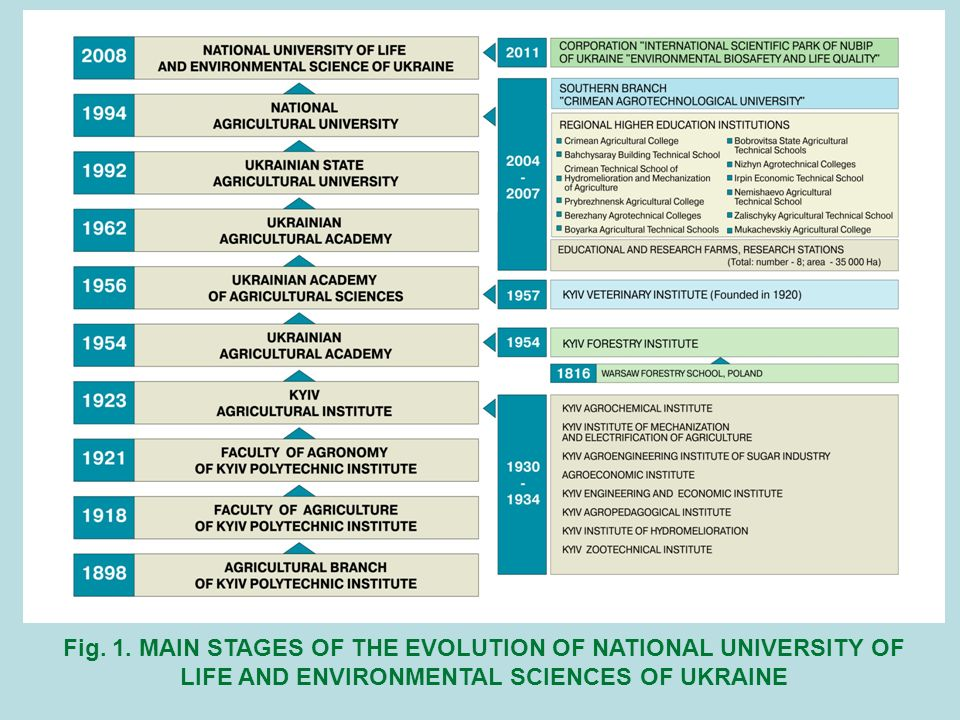 Fig. 1. MAIN STAGES OF THE EVOLUTION OF NATIONAL UNIVERSITY OF LIFE AND ENVIRONMENTAL SCIENCES OF UKRAINE