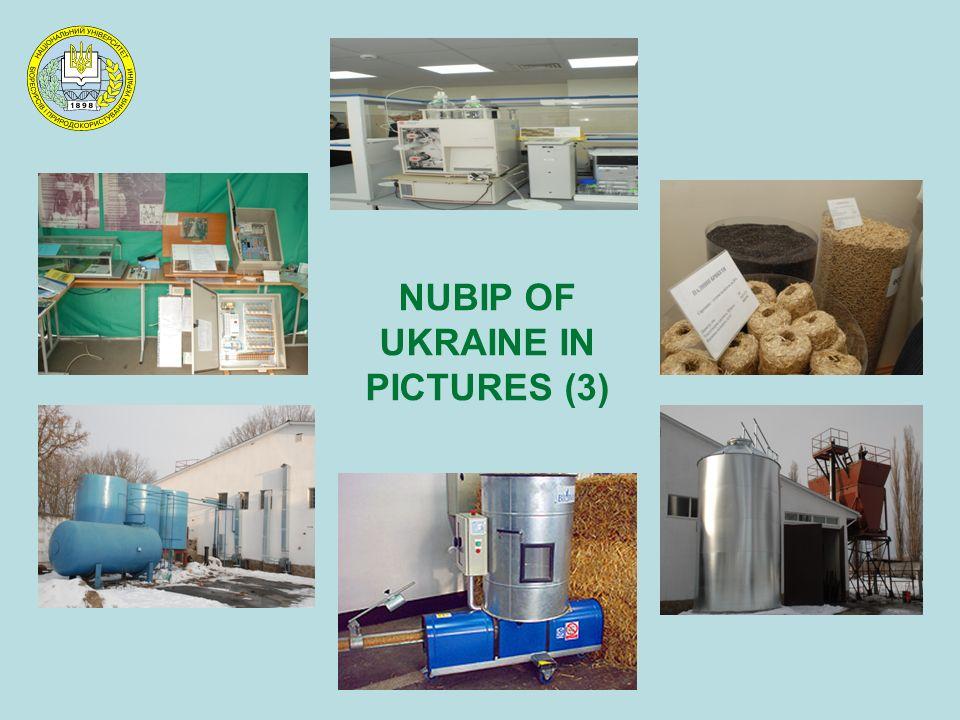 NUBIP OF UKRAINE IN PICTURES (3)