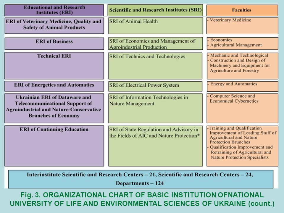 Fig. 3. ORGANIZATIONAL CHART OF BASIC INSTITUTION OFNATIONAL UNIVERSITY OF LIFE AND ENVIRONMENTAL SCIENCES OF UKRAINE (count.)