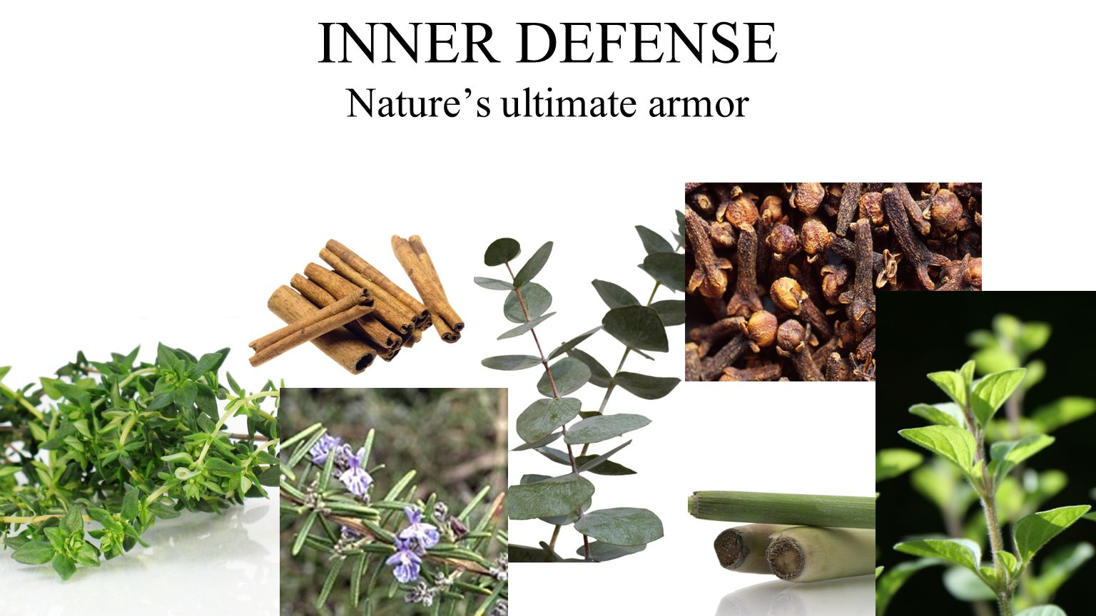 INNER DEFENSE Natures ultimate armor