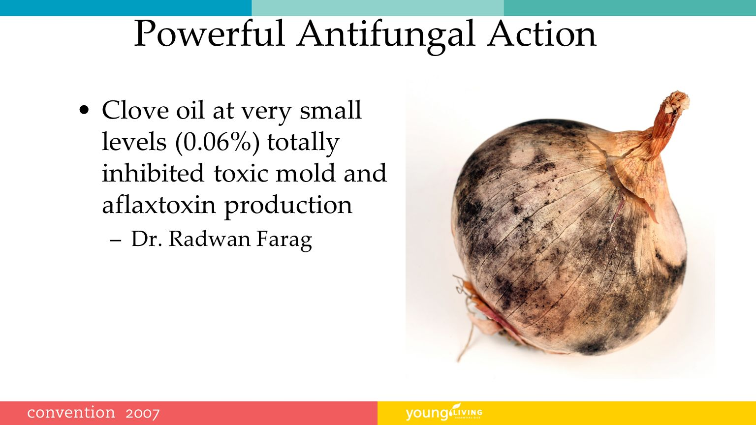 Powerful Antifungal Action Clove oil at very small levels (0.06%) totally inhibited toxic mold and aflaxtoxin production –Dr.