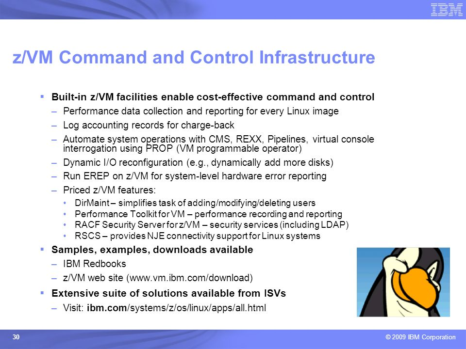 © 2009 IBM Corporation 30 Built-in z/VM facilities enable cost-effective command and control –Performance data collection and reporting for every Linu