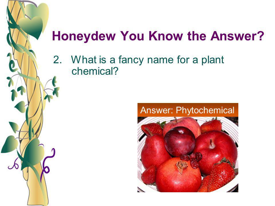 Honeydew You Know the Answer? 2. What is a fancy name for a plant chemical? Answer: Phytochemical