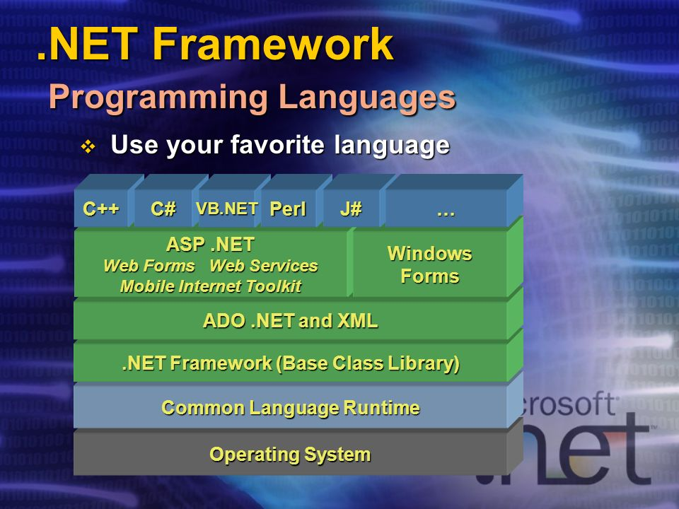 .NET Framework Programming Languages Operating System Common Language Runtime.NET Framework (Base Class Library) ADO.NET and XML ASP.NET Web Forms Web