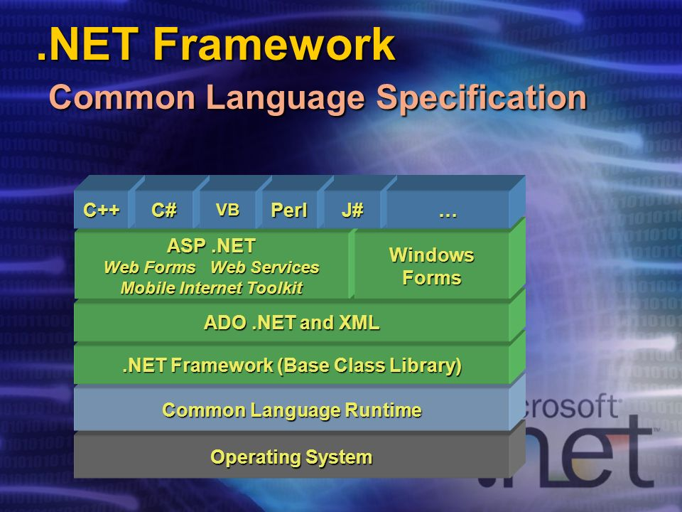 .NET Framework Common Language Specification Operating System Common Language Runtime.NET Framework (Base Class Library) ADO.NET and XML ASP.NET Web F