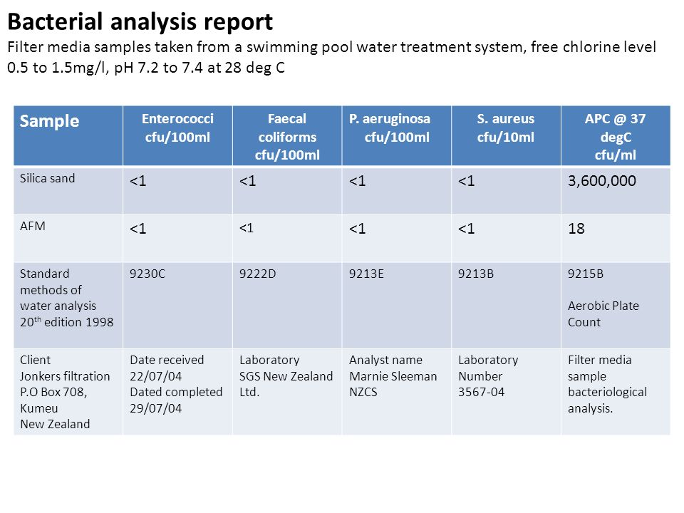 Bacterial analysis report Filter media samples taken from a swimming pool water treatment system, free chlorine level 0.5 to 1.5mg/l, pH 7.2 to 7.4 at