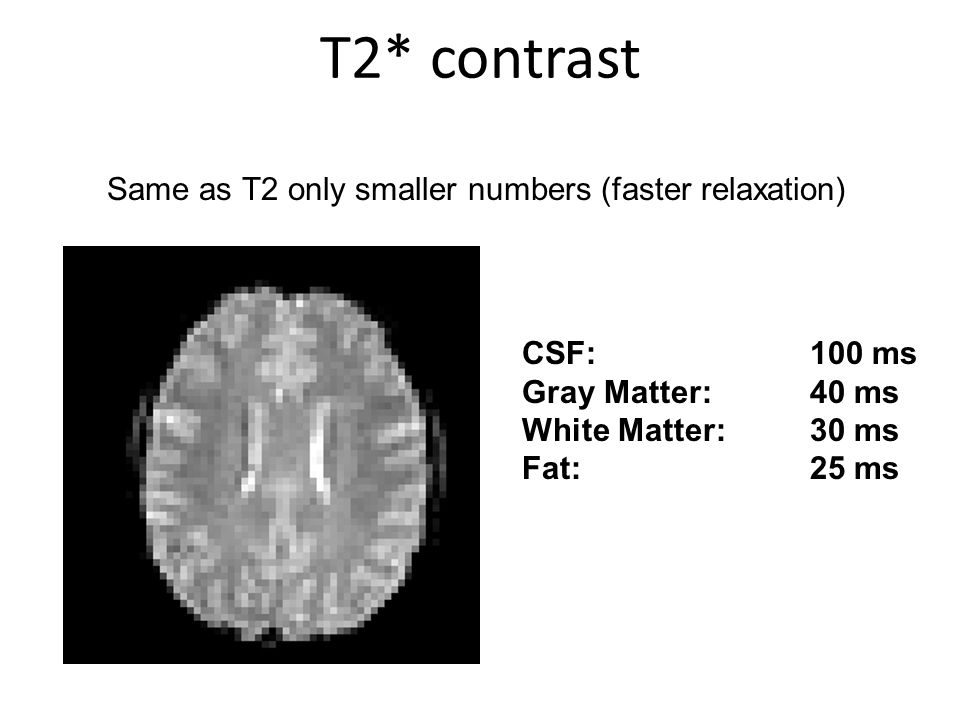 Same as T2 only smaller numbers (faster relaxation) T2* contrast CSF: 100 ms Gray Matter: 40 ms White Matter:30 ms Fat:25 ms