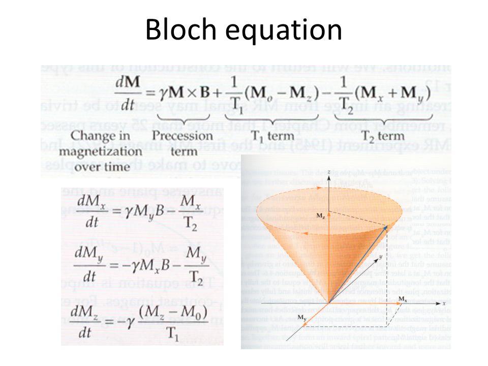 Bloch equation