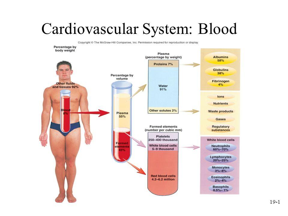 19-1 Cardiovascular System: Blood