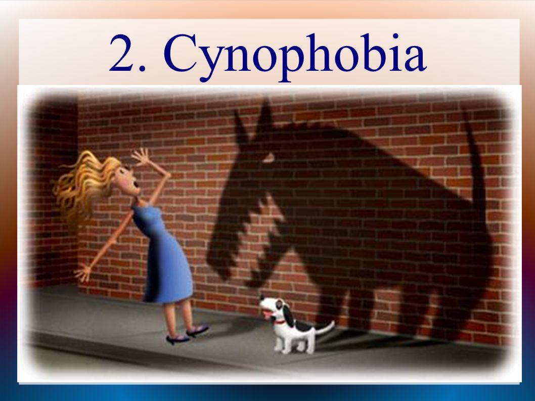 2. Cynophobia