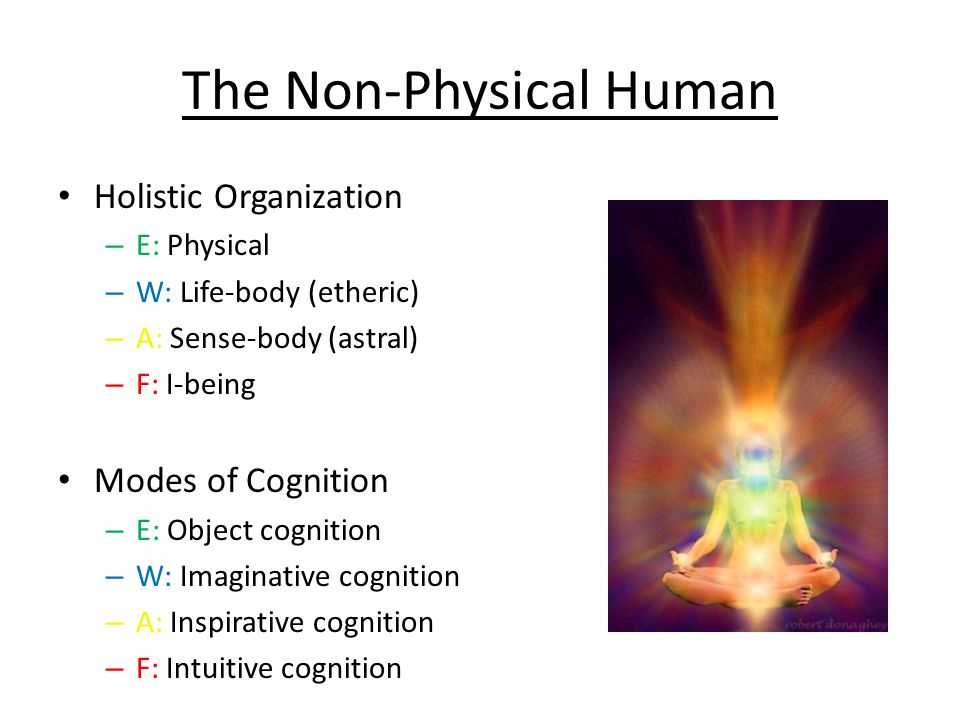 The Non-Physical Human Holistic Organization – E: Physical – W: Life-body (etheric) – A: Sense-body (astral) – F: I-being Modes of Cognition – E: Obje
