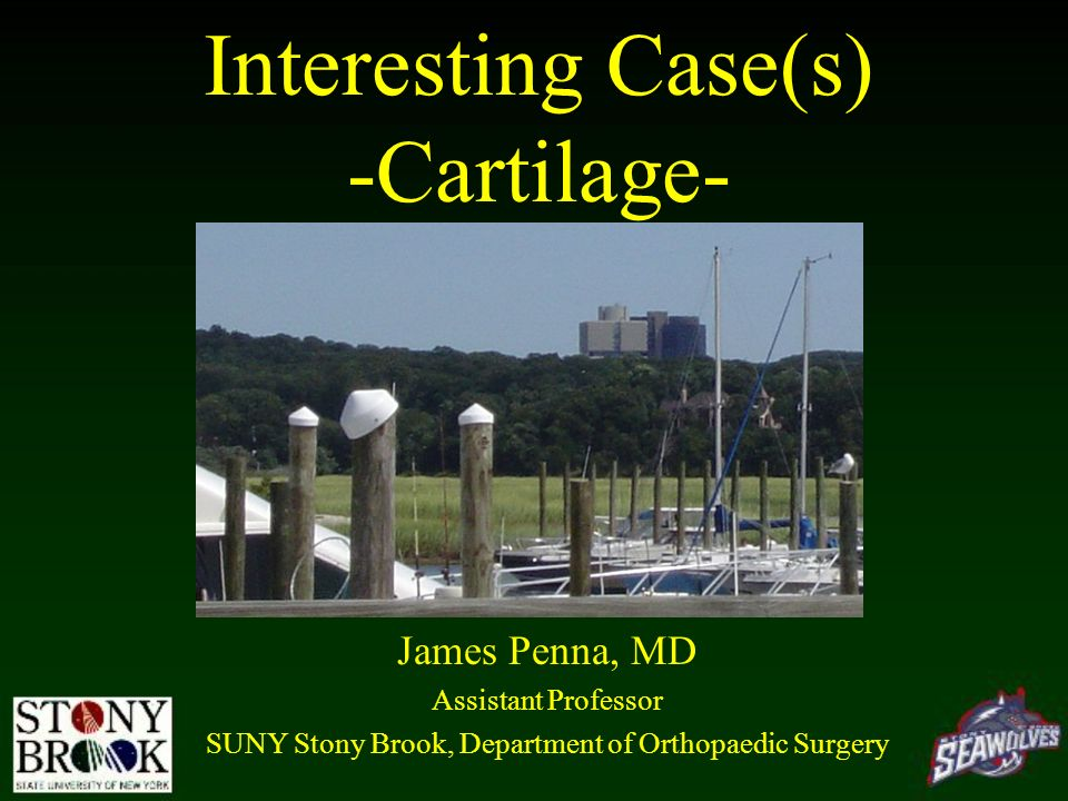 Interesting Case(s) -Cartilage- James Penna, MD Assistant Professor SUNY Stony Brook, Department of Orthopaedic Surgery