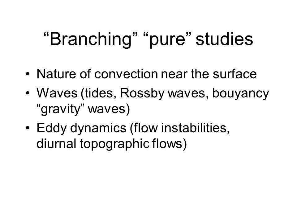 Branching pure studies Nature of convection near the surface Waves (tides, Rossby waves, bouyancy gravity waves) Eddy dynamics (flow instabilities, diurnal topographic flows)