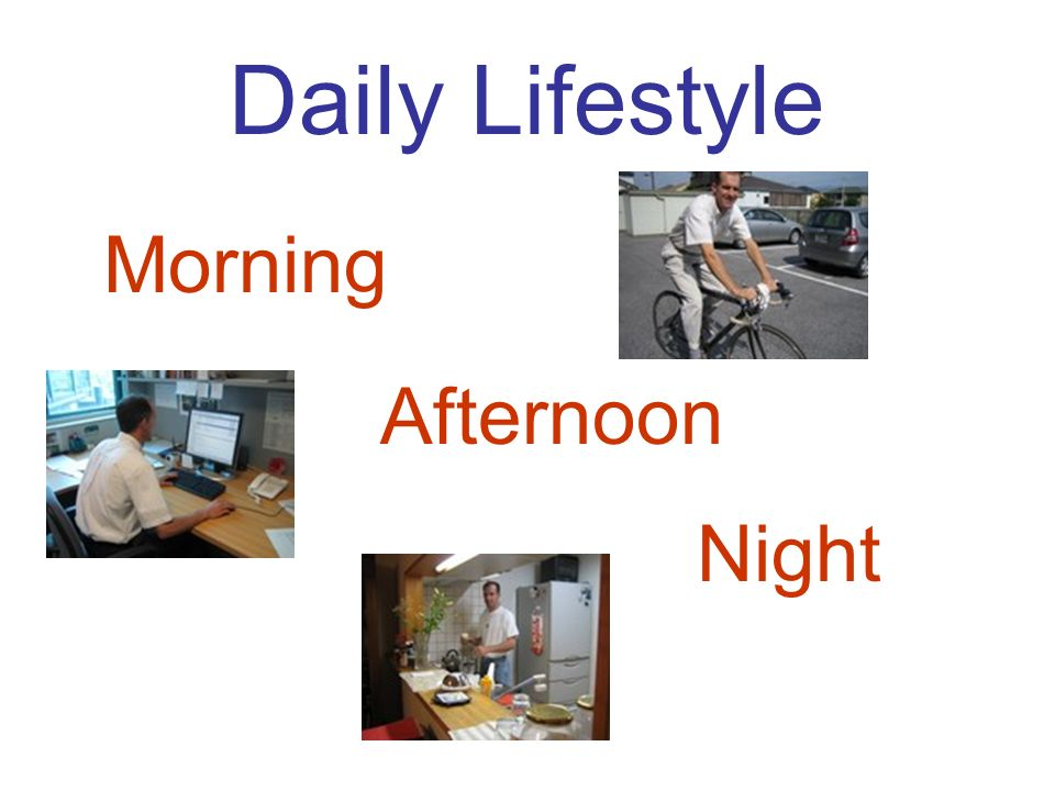 Daily Lifestyle Morning Afternoon Night