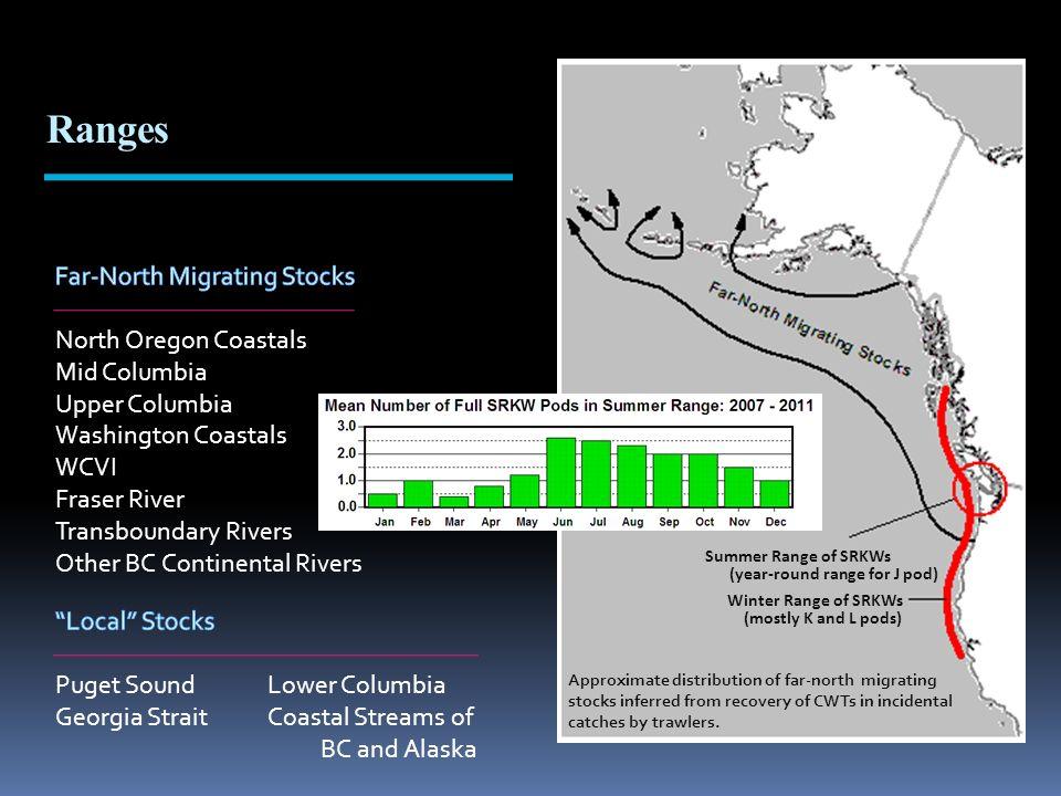 Summer Range of SRKWs (year-round range for J pod) Winter Range of SRKWs (mostly K and L pods) Approximate distribution of far-north migrating stocks