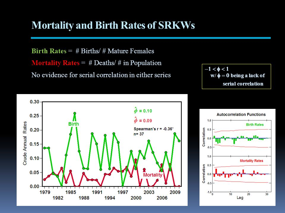 Mortality and Birth Rates of SRKWs Birth Rates = # Births/ # Mature Females Mortality Rates = # Deaths/ # in Population No evidence for serial correlation in either series w/ being a lack of serial correlation