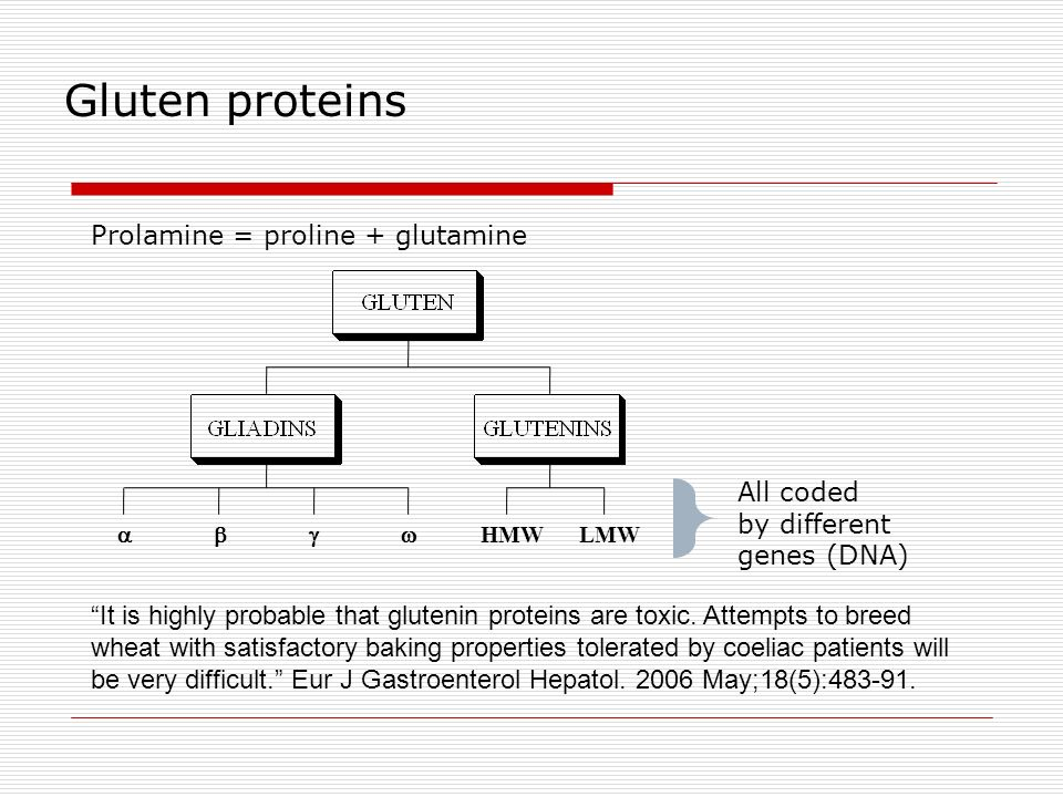 It is highly probable that glutenin proteins are toxic. Attempts to breed wheat with satisfactory baking properties tolerated by coeliac patients will